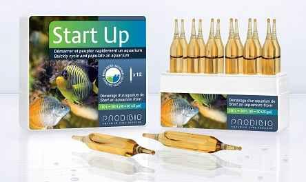 startup aqua